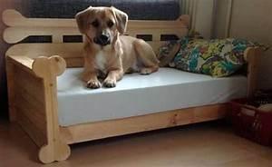 Hundesofa Selber Bauen : pin von bosch home garden auf pets hunde hund sofa und hunde bett ~ Orissabook.com Haus und Dekorationen