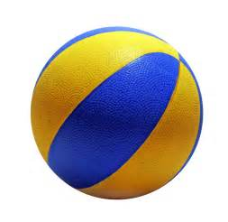Blue and Gold Basketball