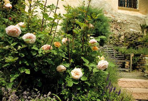Garten Mieten Feier Wien by Rosenburg Garten 169 Lichtstark Meinelocation At