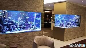 26 Aquariums D U0026 39 Exception
