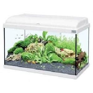 aquarium 80 litres pas cher aquarium 80 litres achat vente aquarium 80 litres pas cher cdiscount