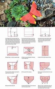 Origami Schmetterling Anleitung : die 25 besten ideen zu origami schmetterling auf pinterest origami kunst leichtes origami ~ Frokenaadalensverden.com Haus und Dekorationen