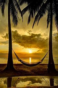 Beautiful Beach Sunset Hammock
