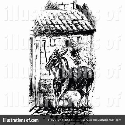Mule Illustration Clipart Prawny Royalty Rf