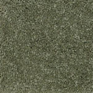 28 what color paint goes with light green carpet carpet