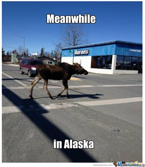 Alaska Memes - alaska memes image memes at relatably com