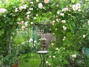 Plantes Grimpantes Pot Pour Terrasse : arceau treillage ~ Premium-room.com Idées de Décoration