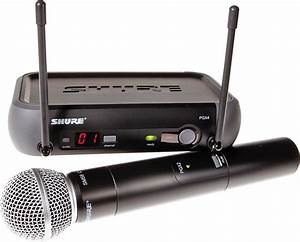 Rex And The Bass  Shure Pgx24  Sm58 Wireless Microphone