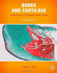 Bones And Cartilage 2nd Edition
