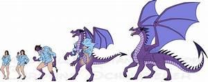 Western Dragon Transformation - Commission by Carolzilla ...