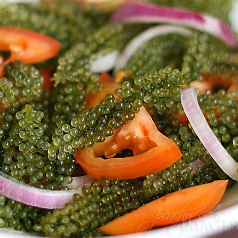 seaweed called lato lato salad  peach kitchen