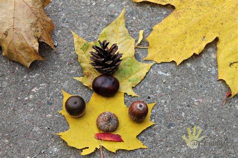 Lengvas rudens darbelis iš gamtinės medžiagos. Vaikų ...