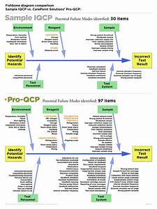 An Outside Review Of An Iqcp For Poc