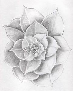 Gallery: Beautiful Easy Flower Pics Drawn In Pencil In ...