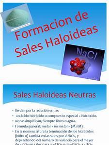 Www Otto De Sale : formacion de sales haloideas ~ Bigdaddyawards.com Haus und Dekorationen
