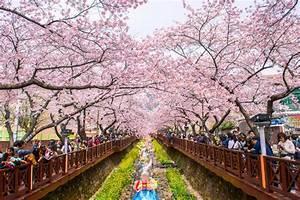 JINHAE,KOREA