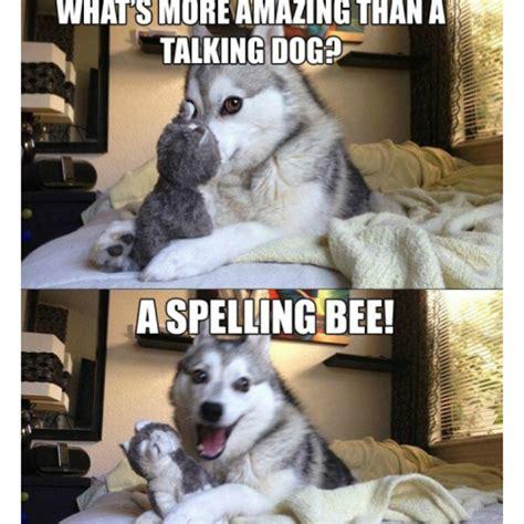 pawful pup puns     cringe barkpost