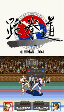 taekwon  video game wikipedia