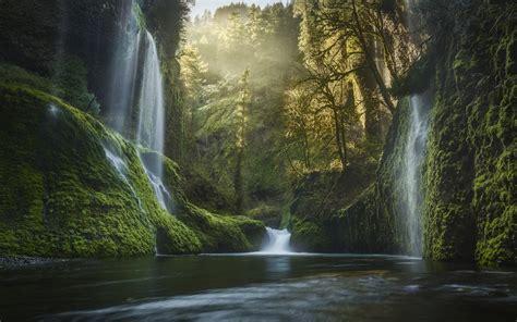 Nature, Landscape, Oregon, Waterfall, Moss, Forest, Mist