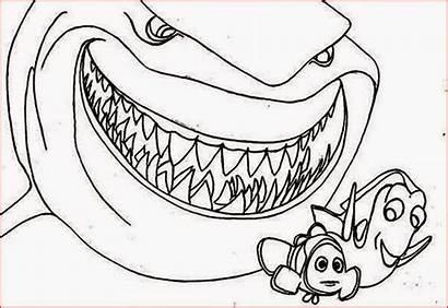 Pages Coloring Shark Sharkcoloring Popular