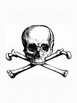 Skull Crossbones Bones Cross Coloring Pages Bone Printable Tattoos Clipart Pirate Tattoo Crossbone Draw Instant Skeleton Etsy Crossed Fabric Drawings sketch template