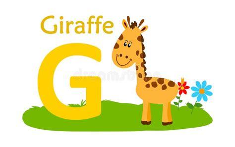 Carta Animal Del Alfabeto G G Para La Jirafa Ilustración