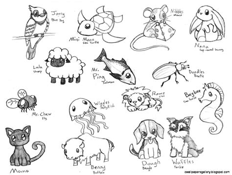 Chibi Animals Wallpaper - animal sketches easy wallpapers gallery