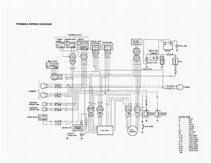 6b5 Warrior 350 Cdi Wiring Diagram
