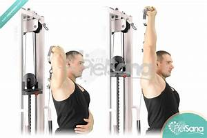 The gallery for --> Overhead Tricep Extension Machine