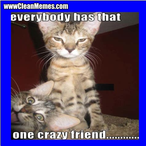 Crazy Friends Meme - crazy friends meme 100 images everyone has that one friend http memebinge com everyone has