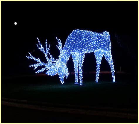 light up reindeer and sleigh home design ideas