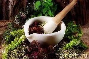 Травы для очищения почек печени