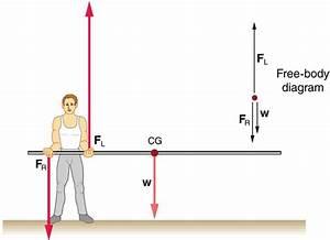 Statics And Equilibrium