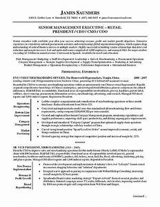 1000 ideas about executive resume on pinterest resume With executive resume tips