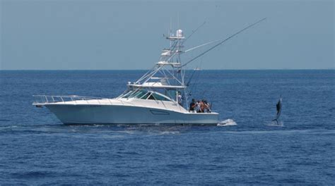 Cabo Boats by Research 2009 Cabo Yachts 45 Express On Iboats