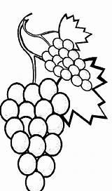 Coloring Grapes Pages Sweet Fruits Favorite Vine Fruit Printable Getdrawings Getcolorings Colorluna sketch template