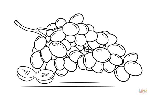 Coloring Grapes by Grapes Coloring Pages Of 6 Coloring Pages