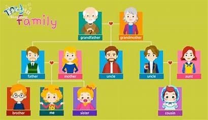 English Learning Meet Gifs Members Vocabulary Tree