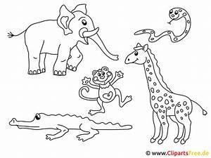 Ausmalbilder, Ausdrucken, Tierpark