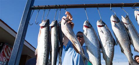 Charter Boat Fishing Grand Haven by Fishing Grand Haven