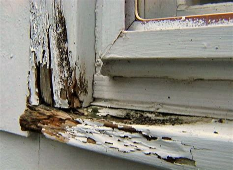 Replace Window Sill Outside by How To Repair Rot Damage In A Sill Or Frame And Avoid