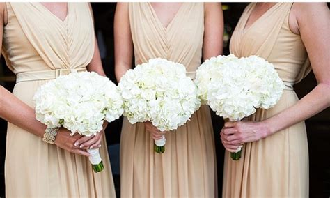 Hydrangea Wedding Bouquets Diamond Bride Bouquets Groupon