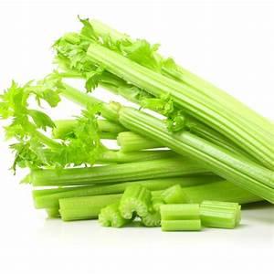Archaeology Of Fruits  U0026 Vegetables - Celery