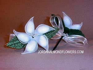 you have to see jordan almond flowers wedding favors on With jordan almonds wedding favors