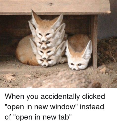 open in new window ml310305 when you accidentally clicked open in new window instead