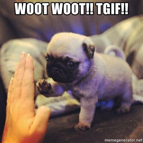 Woot Woot Meme - woot woot tgif cute tgif pug meme generator