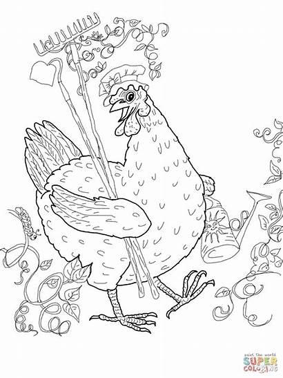 Hen Coloring Colorear Chicken Drawing Printable Printables