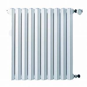 Prix Radiateur Fonte : radiateur en fonte savane chapp e ~ Melissatoandfro.com Idées de Décoration