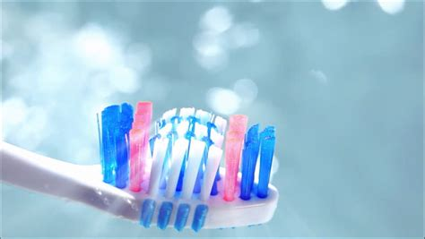Toothbrush Definition/meaning