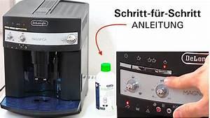 Dm Entkalker Für Kaffeevollautomaten : saeco ca6700 95 universal fl ssig entkalker f r ~ Michelbontemps.com Haus und Dekorationen